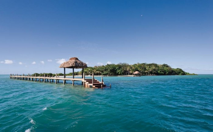 Dolphin+Island+Fiji