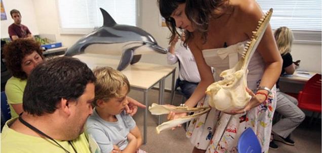 Sursa foto: www.saposyprincesas.com