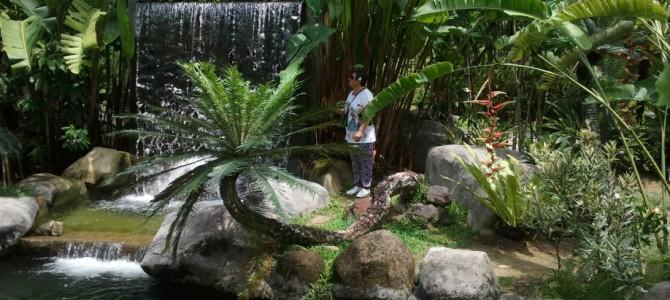 Călătorind prin Asia: Kuala Lumpur – între agonie și extaz