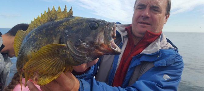 Kamchatka – natura în stare pură. Partea a XI a: aventuri in golful Russkaya
