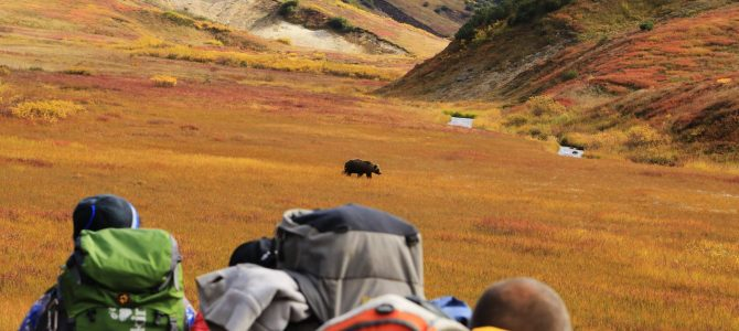 Kamchatka – natura în stare pură. Partea a VII a: zbor deasupra vulcanilor