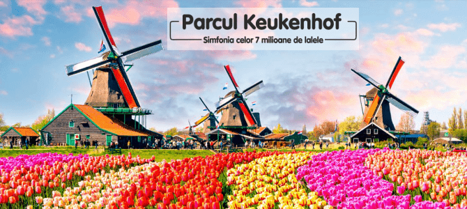 KEUKENHOF, Gradina Europei sau Simfonia Lalelelor opus 7 milioane