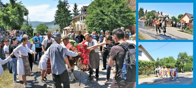 """Turist in ţara mea: ,,Împănatul boului"""" de la Mănăstirea, judeţul Cluj"""