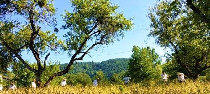 Turist în țara mea: Clacă de coasă în Prihodişte
