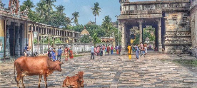 Planeta India: ţara celor mai năucitoare contraste de pe faţa pământului