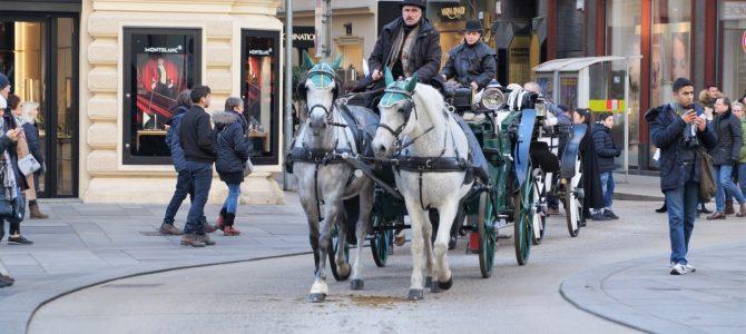 Ce poți vizita la Viena într-o singură zi