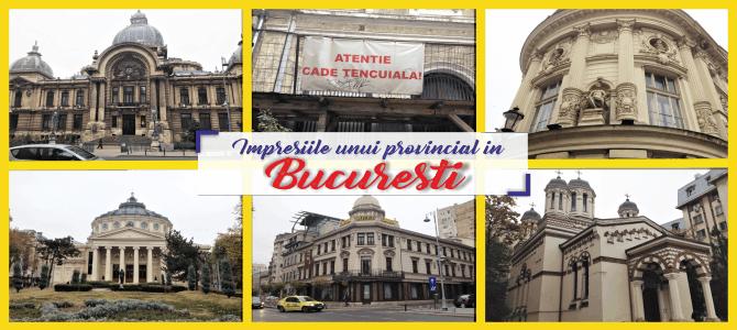 Impresiile unui provincial în București
